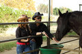 Free Couple Feeding A Black Horse Royalty Free Stock Images - 18110059