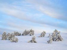 Free Winter. Stock Photos - 18110973