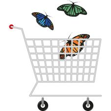 Free Colorful Butterfly Stock Image - 18118771