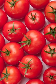 Free Tomatoes Royalty Free Stock Images - 18119069
