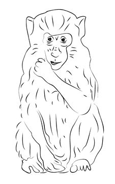 Free Sketch Of Monkey Royalty Free Stock Photography - 18119257