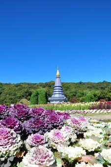 Free The Stupa Phra Mahathat Naphamethanidon Stock Images - 18119364