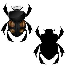 Free Black Bug Royalty Free Stock Image - 18119556