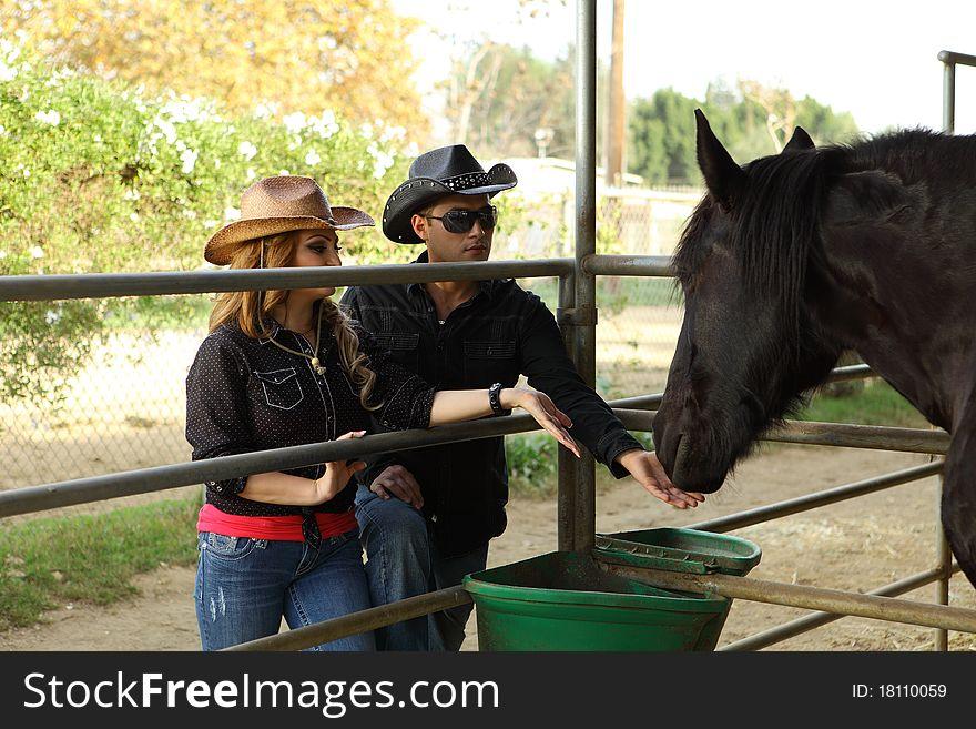 Couple feeding a black horse