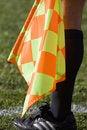 Free Soccer Linesman Royalty Free Stock Photos - 18125588