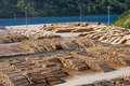 Free Timber Logs On A Pier Stock Images - 18129444