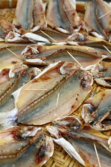 Free Salted Fishes Royalty Free Stock Photo - 18120075
