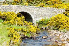 Free Bridge In Scotland Stock Image - 18120441