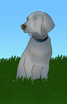 Free Gray Dog In Grass Illustration Royalty Free Stock Photography - 18123917