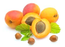 Free Apricots And Nuts Stock Photography - 18126442