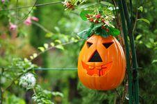 Free Halloween Pumpkin Stock Photos - 18126923