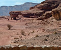 Free View On Canyon In Timna Park, Israel Royalty Free Stock Photos - 18139188