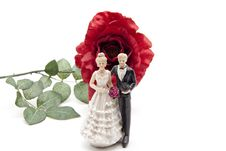 Bridal Couple And Red Rose Royalty Free Stock Photos
