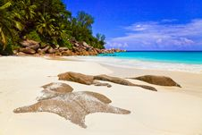 Tropical Beach At Island Praslin, Seychelles Stock Images