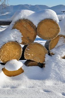 Free Fire Wood Under Snow Royalty Free Stock Photography - 18132847