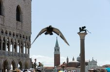 Free St Mark Square In Venice Royalty Free Stock Photo - 18138335