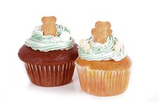 Cupcakes With Teddy