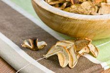 Free Mushrooms Royalty Free Stock Photo - 18139015