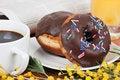 Free Continental Breakfast Stock Photos - 18146403