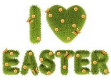 Free Green Easter Grass Royalty Free Stock Photo - 18140685