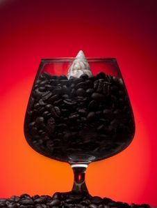 Glass And Coffee Beans Inside With Sea Shell Stock Image