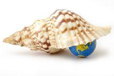 Sea World Stock Images