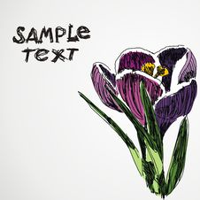 Free Floral  Postcard Stock Photography - 18145422