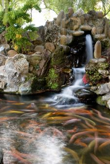 Free Fishpond Royalty Free Stock Image - 18145656