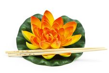 Free Water Lily Flower Stock Photos - 18145983