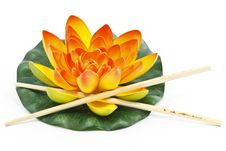 Free Water Lily Flower Stock Photography - 18145992