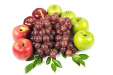 Free Fruits Stock Photography - 18148152