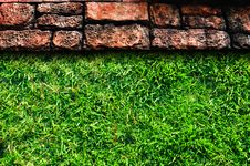 Pavement And Grass Royalty Free Stock Photos