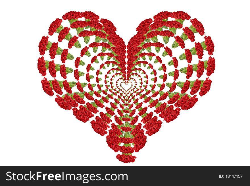 Carnations Heart