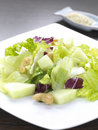 Free Colorful Salad Royalty Free Stock Photo - 18156585