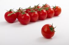 Free Ripe Cherry Tomatoes On A Branch Royalty Free Stock Photo - 18151235