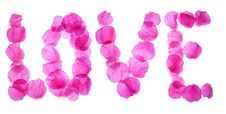 Rose Petals Love Stock Image