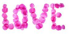 Free Rose Petals Love Stock Image - 18152661