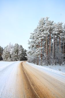 Free A Winter Road Royalty Free Stock Photo - 18153975