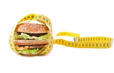 Free Cheeseburger And Centimeter Royalty Free Stock Images - 18156339