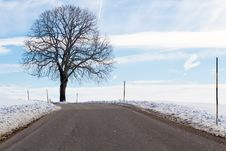 Free Country Road In Winter Royalty Free Stock Images - 18156359