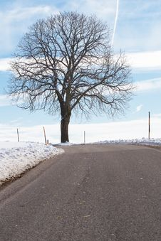 Free Country Road In Winter Royalty Free Stock Photos - 18156428