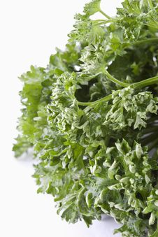 Free Bunch Of Parsley Stock Photography - 18156942