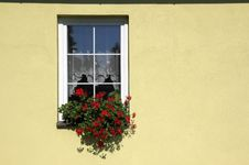 Free Decorated Window Detail Stock Photography - 18157272