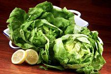 Free Salad Royalty Free Stock Photo - 18157875