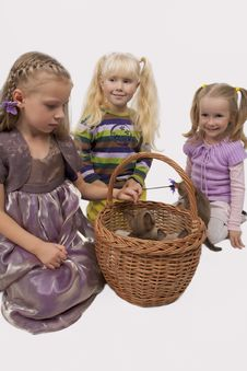 Three Little Girls And Three Small Cats Royalty Free Stock Photography