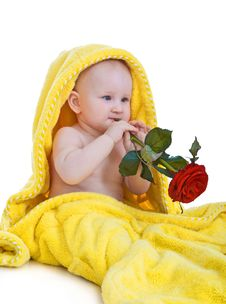 Free Lovely Baby Holding A Red Rose Royalty Free Stock Photo - 18163545