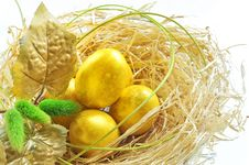 Easter Eggs In The Nest Royalty Free Stock Images
