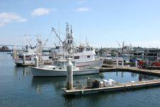 Free San Diego Marina, California. Royalty Free Stock Image - 18165746