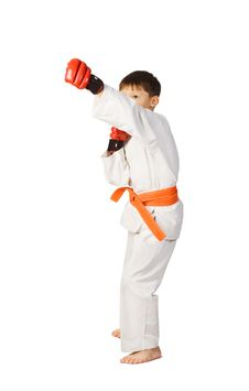 Free Aikido Boy.Martial Arts Stock Photo - 18168330