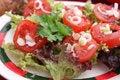 Free Fresh Salad Royalty Free Stock Image - 18179336